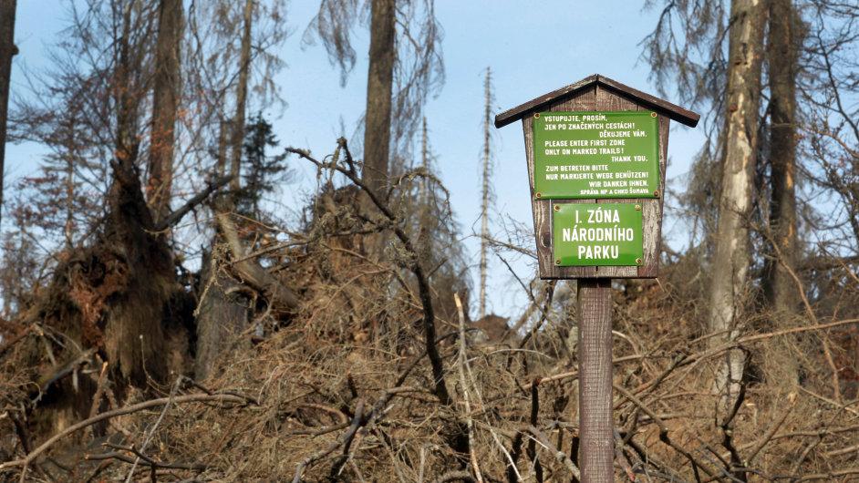 První zóna Národního parku (NP) Šumava