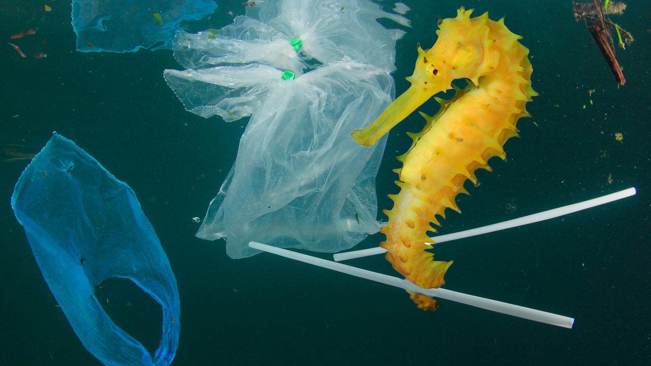 Světové oceány a moře zaplavují miliony tun plastových obalů či brček.