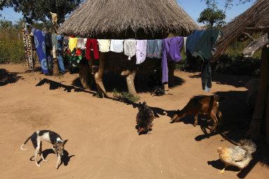 """""""Nad některými africkými zeměmi visí hrozba dluhové krize– hovoří se například oZambii,"""" píše se v analýze společnosti Deloitte Czech Republic zletošního dubna."""