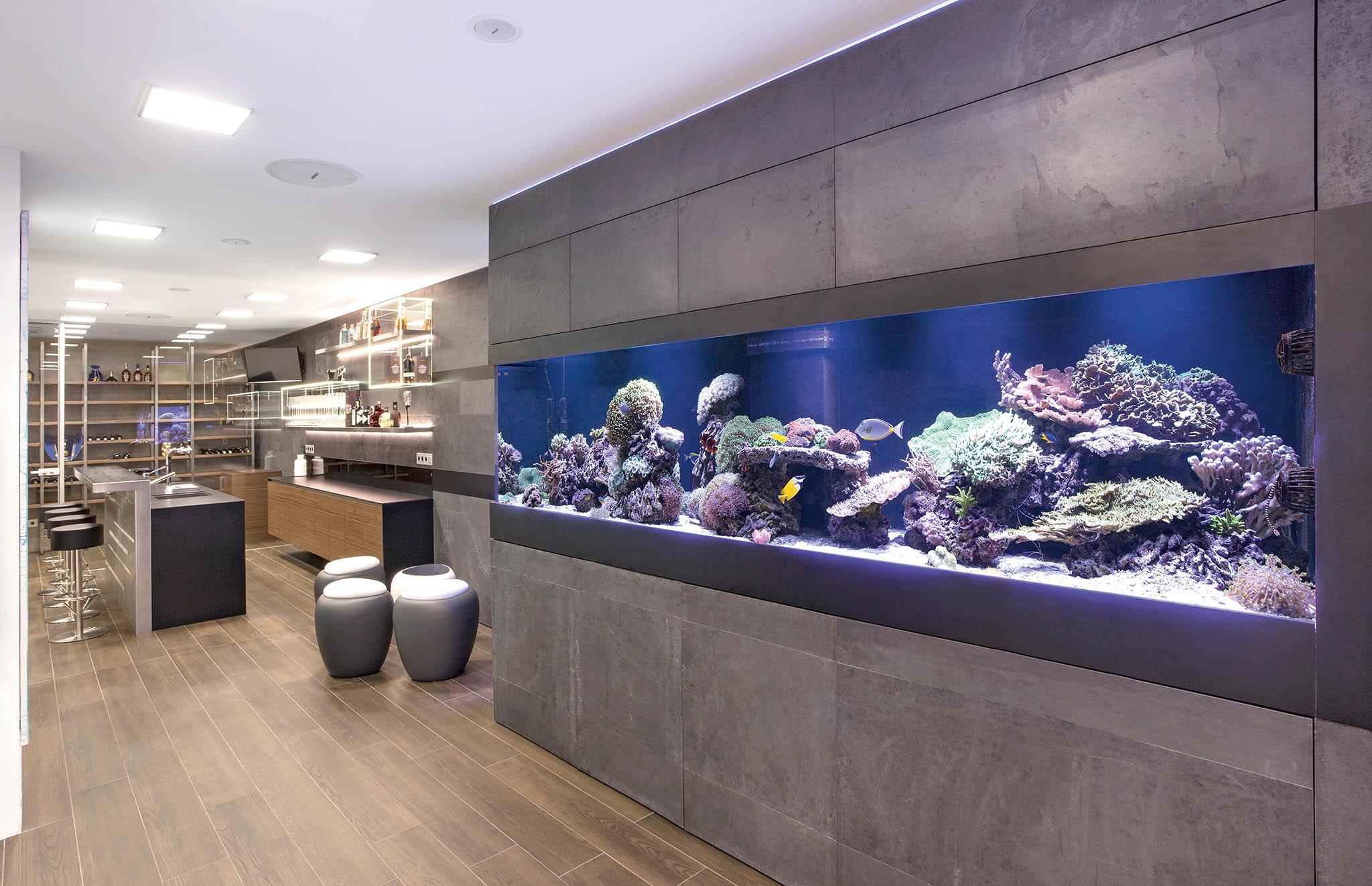 Pořídit si mořské akvárium znamená respektovat řadu pravidel. Jejich výčet začíná správným výběrem ryb, tak aby se vzájemně nepozabíjely či nesežraly, akončí pravidelným sledováním kvality vody adoplňováním minerálů.