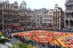 Bruselský Grand-Place jednou za dva roky ožívá květinami. Prohlédněte si koberec z více než 500 tisíc květů