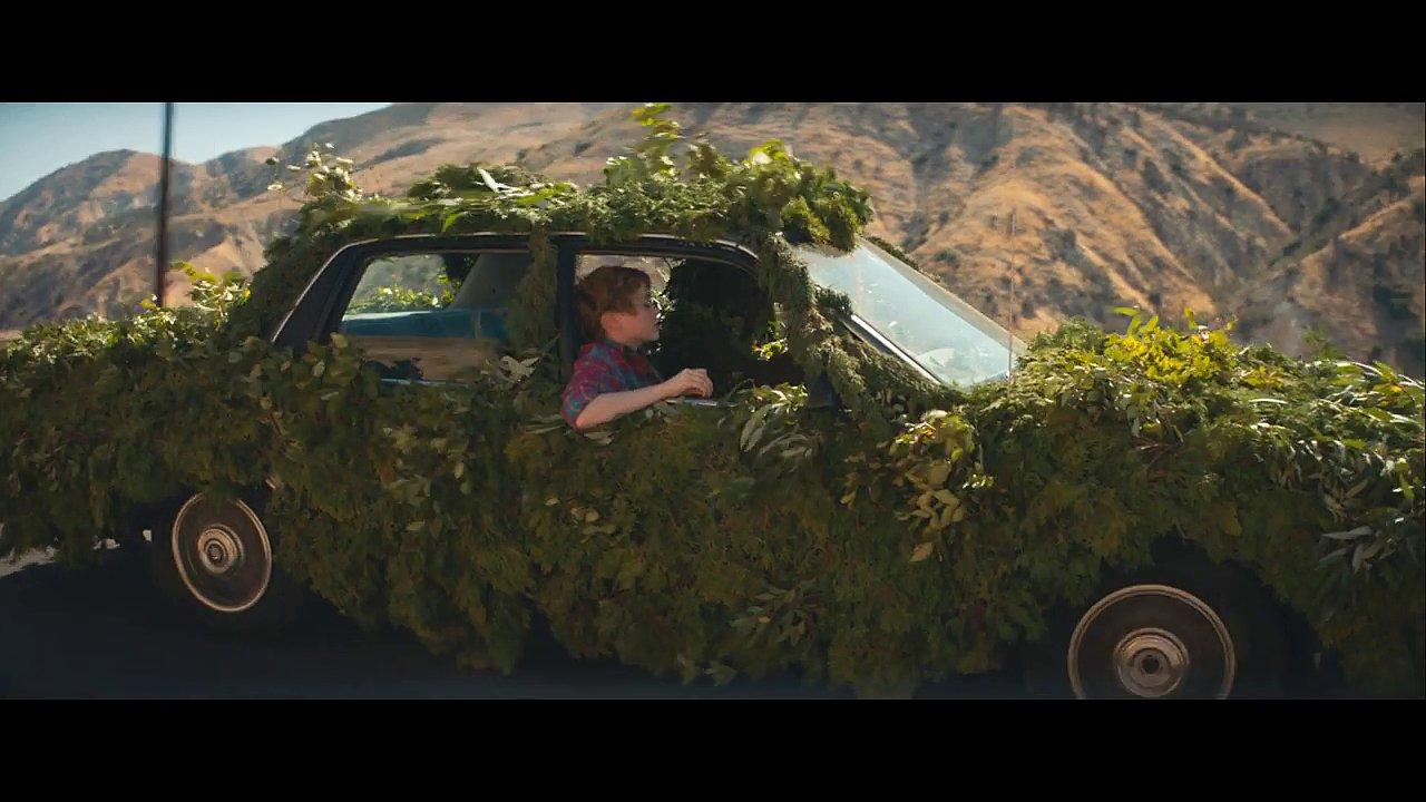 Patnáctiletá herečka Sophia Lillisová, známá z letošního hororu To, putuje americkou krajinou v doprovodu oživlého stromu.