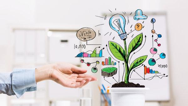 Start-up a jeho podpora