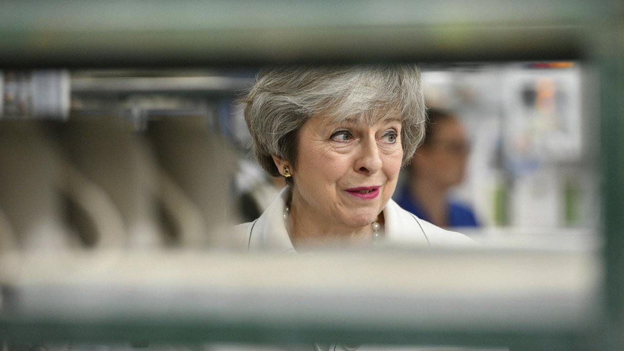 Mayové hrozí kvůli neřízenému brexitu odchodem členové vlády.