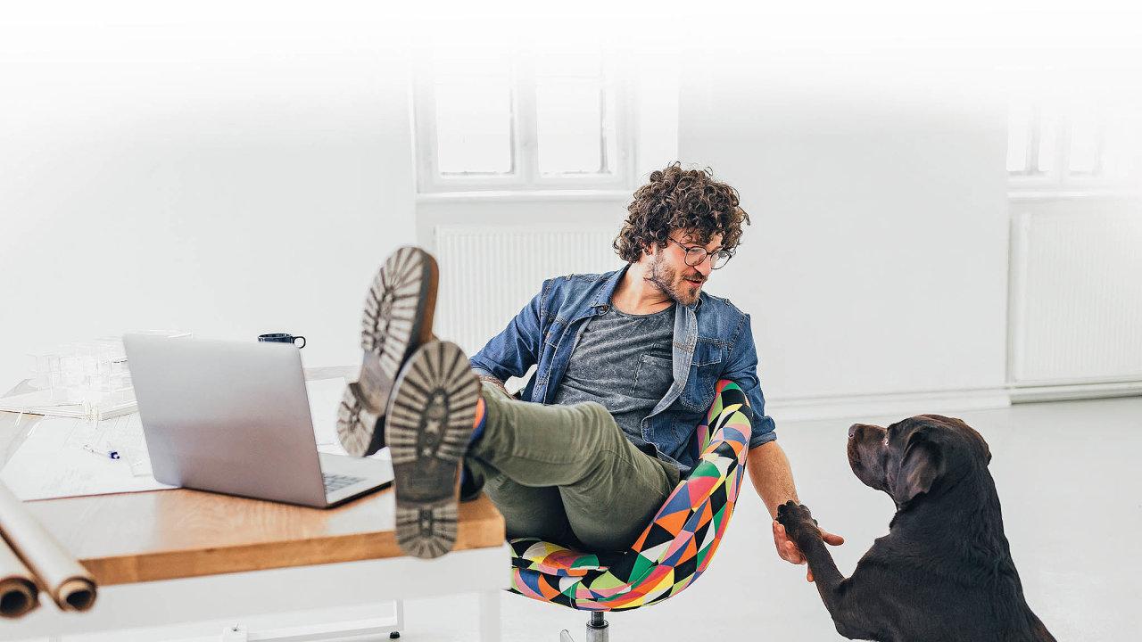 Podmínkou pro to, abyste si mohli s sebou do práce přivést psa, je souhlas šéfa a mnohdy i správce kanceláře či objektu.