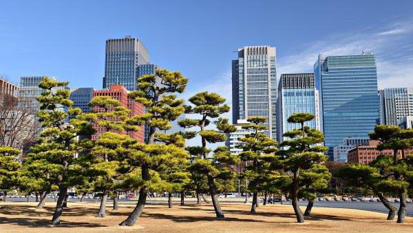 Kde se �ije nejl�pe? Tradi�n� �eb���ek Monocle m� nov�ho v�t�ze, Tokio