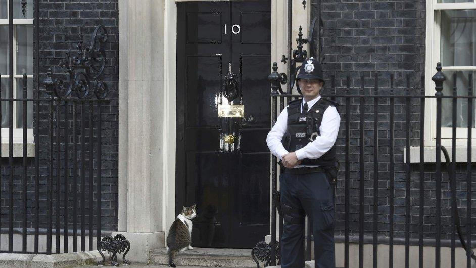 Kocour Larry na Downing Street 10 zůstává, na rozdíl od Davida Camerona.