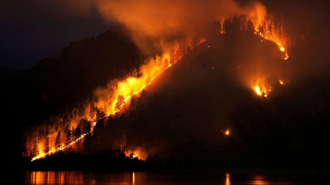 Sibiř, požár, les