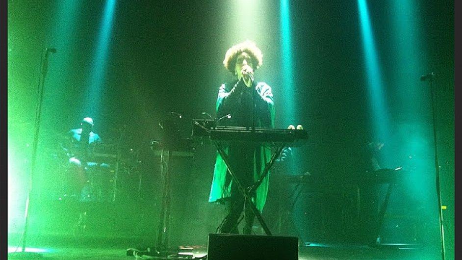 Snímek z prvního letošního vystoupení Massive Attack na koncertě v Dublinu. Na snímku je zpěvačka Martina Topleyová Birdová.