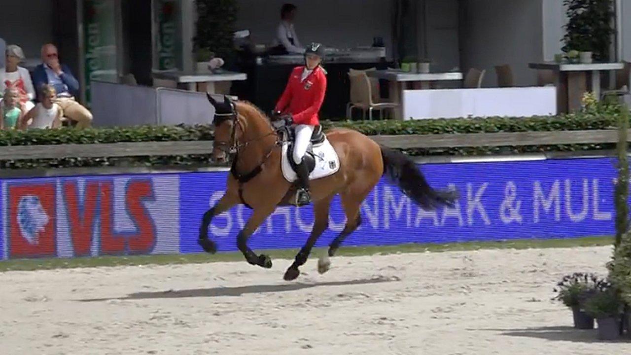 Jeden z nejdražších koní na světě? Klisnu Catch Me If You Can koupil Kellner