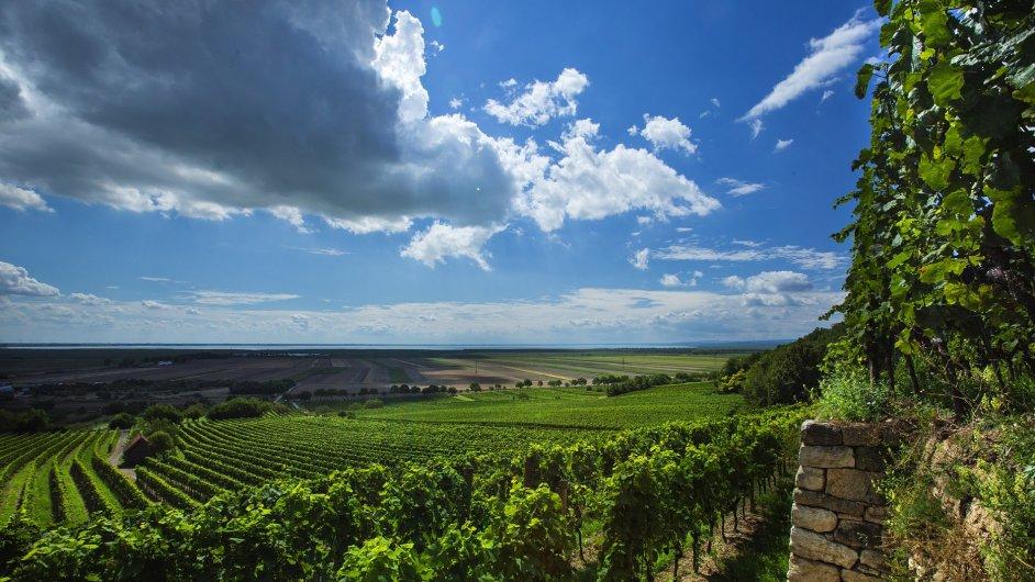Na vinici Kirschgarten v rakouském Burgenlandu se produkují špičková vína Weingut Umathum.
