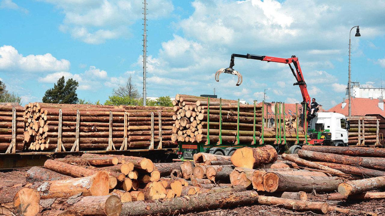 Na řešení kůrovcové kalamity se z velké části podílí nákladní železniční dopravce ČD Cargo.