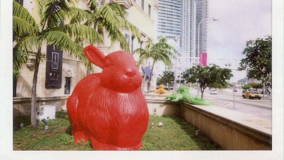 Místo sádrových trpaslíků mají v Miami králíky.