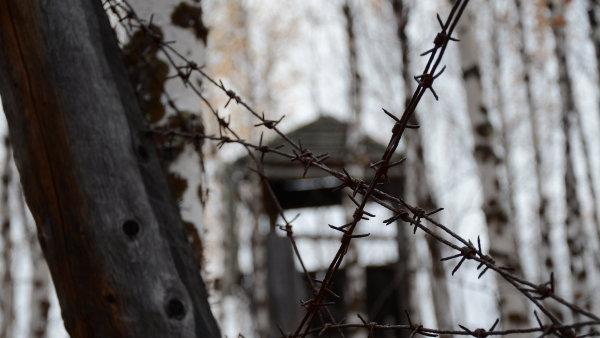 Pracovní tábor u Mrtvé trati