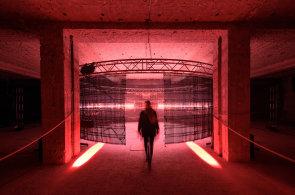 Fotogalerie: Signal festival rozsvěcuje v Praze pralesní liány i pilíře prastarého rituálního monumentu