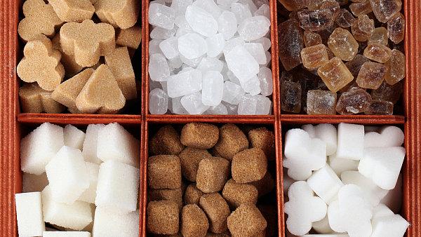 Může být cukr základní surovinou pro výrobu aut? Podle nizozemských studentů ano.
