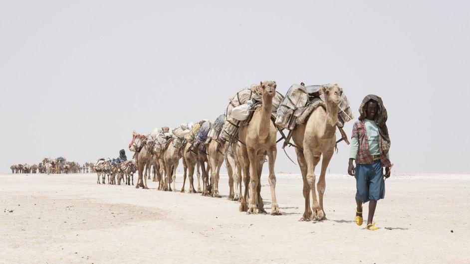 Těžba soli v Etiopii