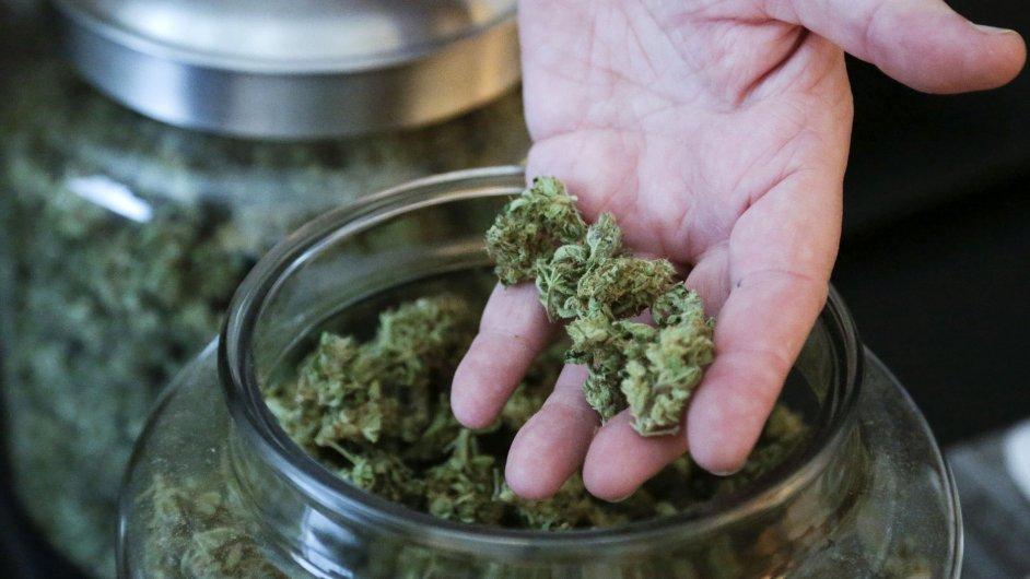 Voliči v USA rozhodovali v některých státech o legalizaci marihuany.