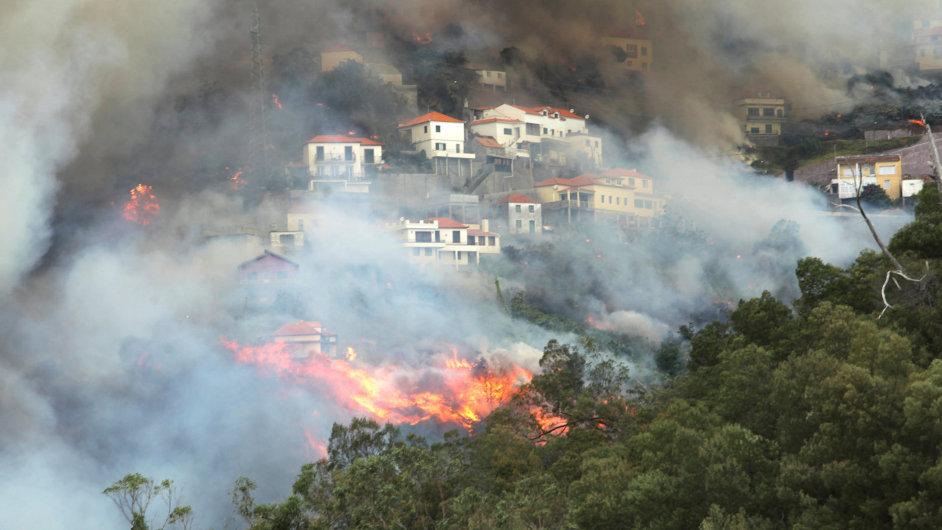 Lesní požáry zasáhly metropoli Madeiry.