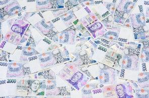 Po roce 1989 chyběl v Česku domácí kapitál. Nyní je ho už dost, a tak je nutné jej zhodnocovat.