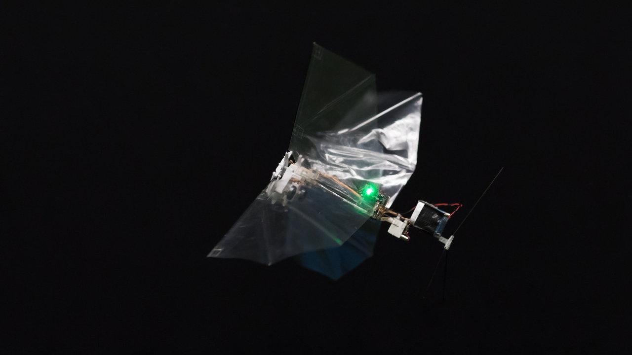 Robot, který dokáže létat jako hmyz.