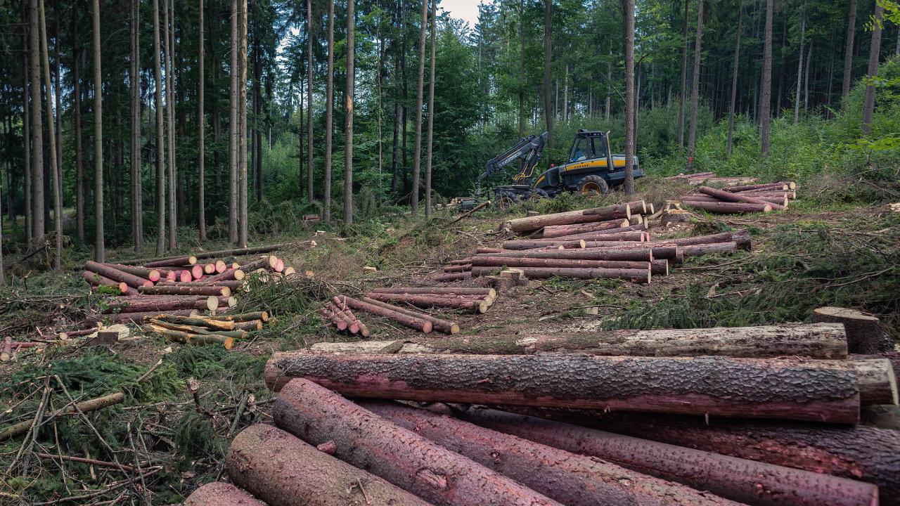 Sdružení vlastníků obecních asoukromých lesů postátu žádá urychlené vyplacení kompenzací vevýši 1,8 miliardy korun soukromým aobecním vlastníkům, kteří se vČesku starají o45 procent lesů.