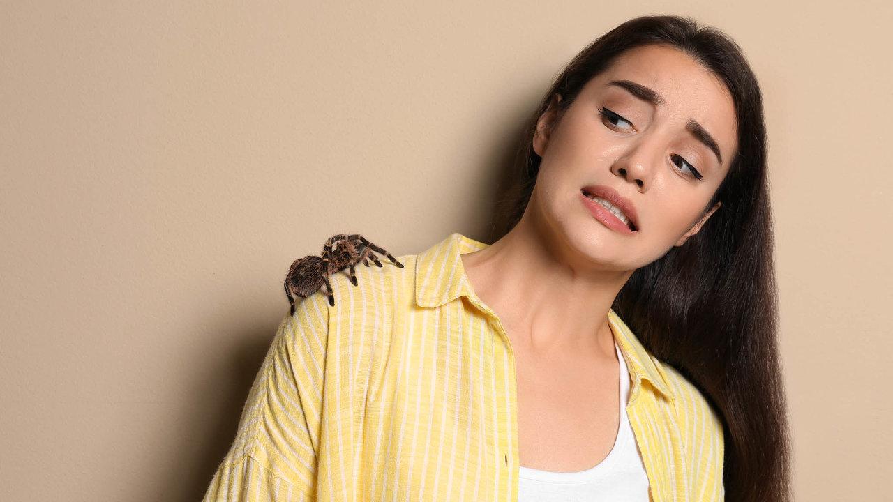 Arachnofobie.Tak se vědecky nazývá specifická fobie, úzkostí provázený abnormální strach zpavouků. Strach zhadů se zase nazývá ofidiofobie.
