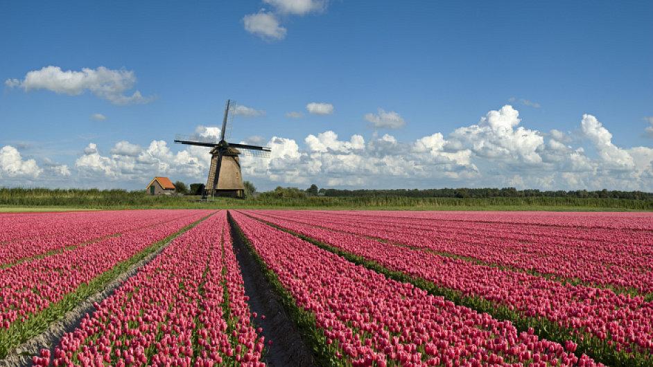 Nizozemsko. Ilustrační foto
