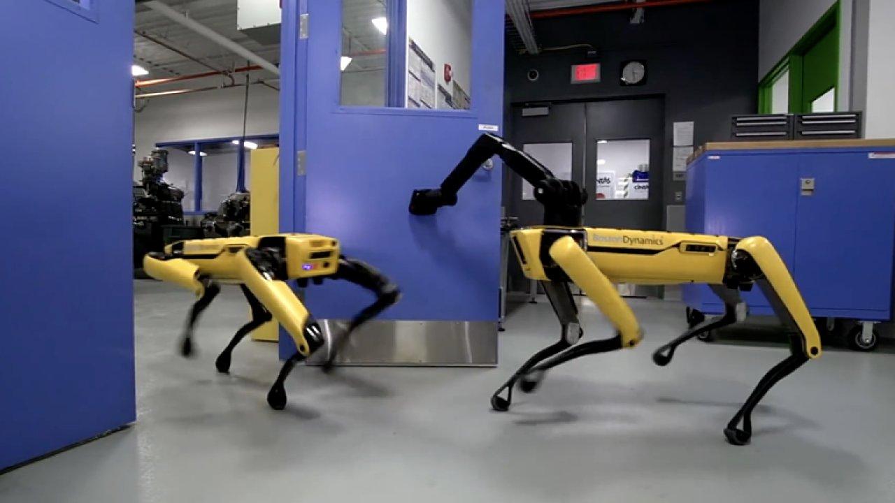 Robotický pes od Boston Dynamics si sám dokáže otevřít dveře.