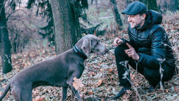 Přírodovědec Petr Synek sbíral první lanýže s čelovkou na hlavě v italských lesích, dnes je dvorním dodavatelem předních českých restaurací