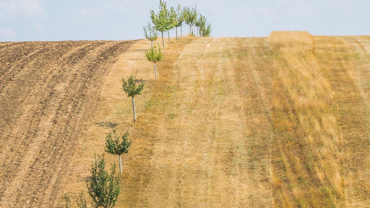 Boj o půdu. Nově chystané zákony by měly ochránit ornou půdu, které je stále větší nedostatek.