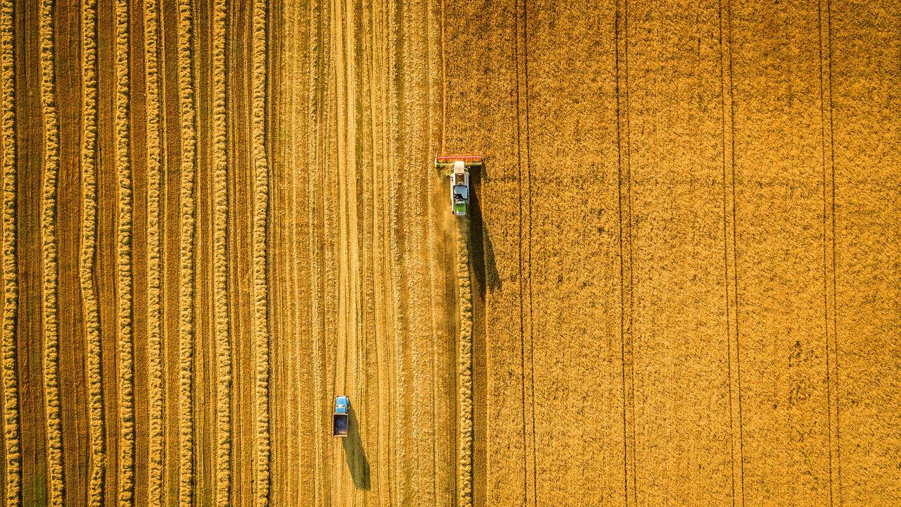 Erozí je vČesku silně poškozeno 500 tisíc hektarů orné půdy, což je zhruba pětina její rozlohy vČesku. Aohrožena je celkem polovina veškeré obhospodařované půdy.