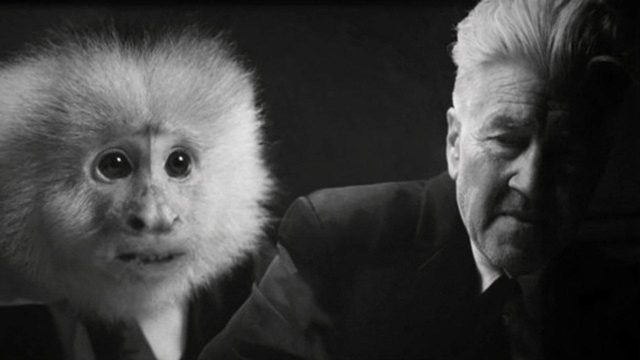 Jedním z posledních snímků Davida Lynche je krátký film nazvaný What Did Jack Do?, který je k vidění na Netflixu a kde režisér v roli detektiva zpovídá opici.