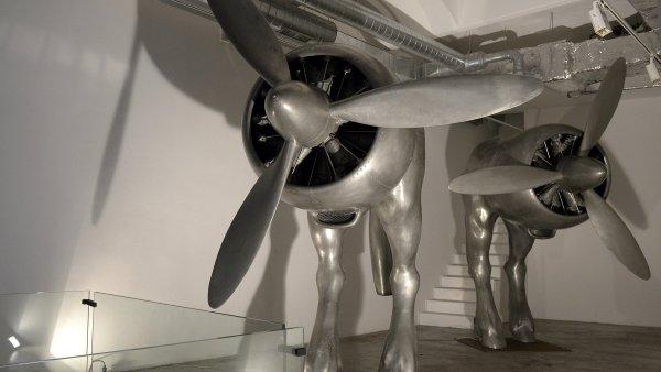 Výstava Davida Černého začne ve středu, potrvá do 29. listopadu.