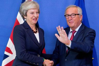 Vestředu večer britská premiérka Theresa Mayová hovořila se šéfem Evropské komise Jeanem-Claudem Junckerem o detailech budoucích vztahů Británie a EU.