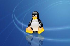 Linux a hry: Z herního otloukánka se může díky Steamu stát herní ráj