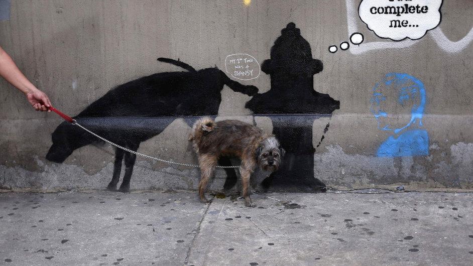 Sprejer Banksy uchvátil New York