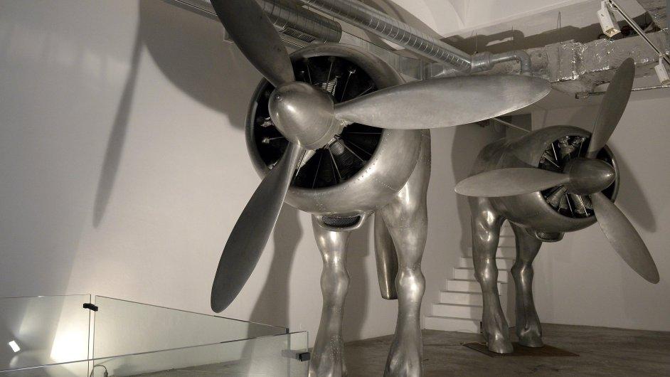 Snímek z výstavy Davida Černého