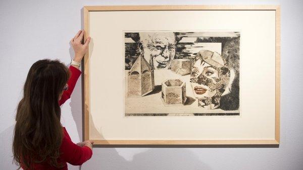 Snímek z výstavy Revolucionářův motýl