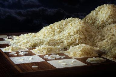 Úskalí exponenciálního růst přesně ilustruje legenda o muži, který žádal od krále rýži dle šachovnice. Za každé pole chtěl dvojnásobek zrnek na předchozím - Ilustrační foto.