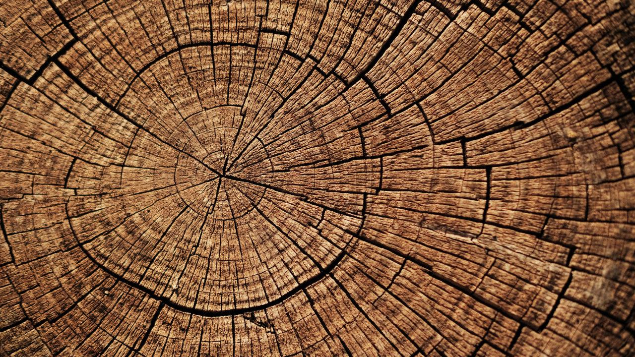 Řeč letokruhů Zizotopů uhlíku akyslíku přítomných vedřevě vědci odečetli, kolik vláhy měl strom vjakém roce.