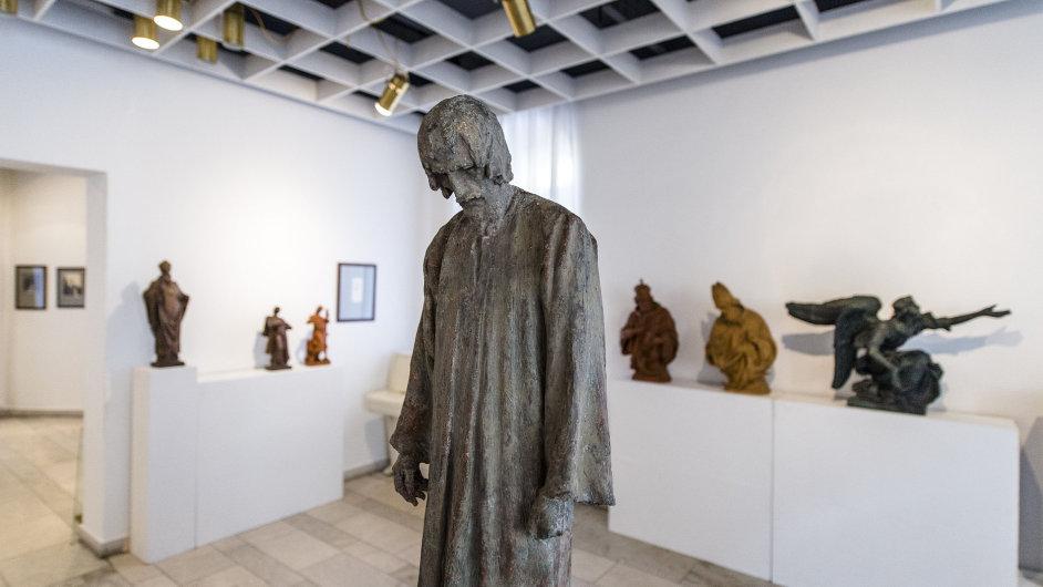 Snímek z výstavy Stanislava Suchardy