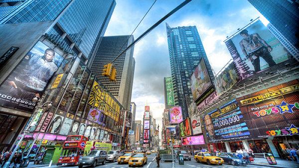 Každý rok narazí během migrace do skleněných fasád newyorských mrakodrapů více než 90 000 ptáků.