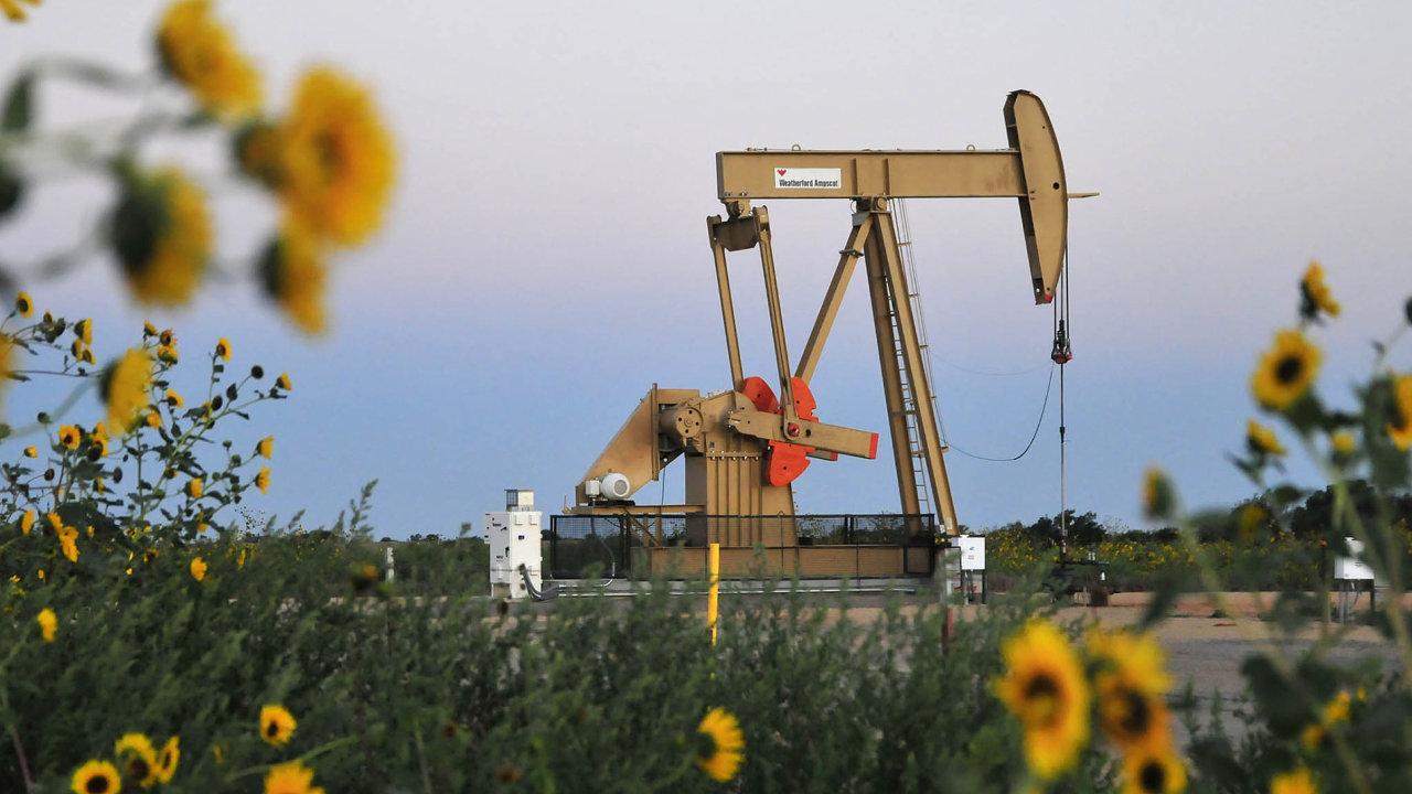 Sedm zdeseti největších producentů vUSA, například Devon Energy, hodlá letos zvýšit břidlicovou těžbu nejméně o10 procent.