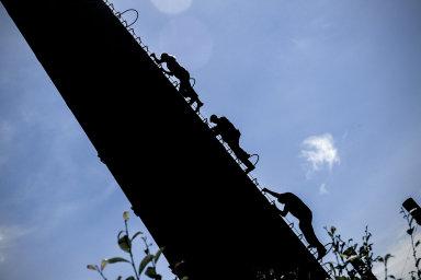 Rok 2018 očima fotografa Honzy Mudry: Kvůli reportáži lezl na 35 metrů vysoký komín, byl v patách Drahošovým i Čižinskému