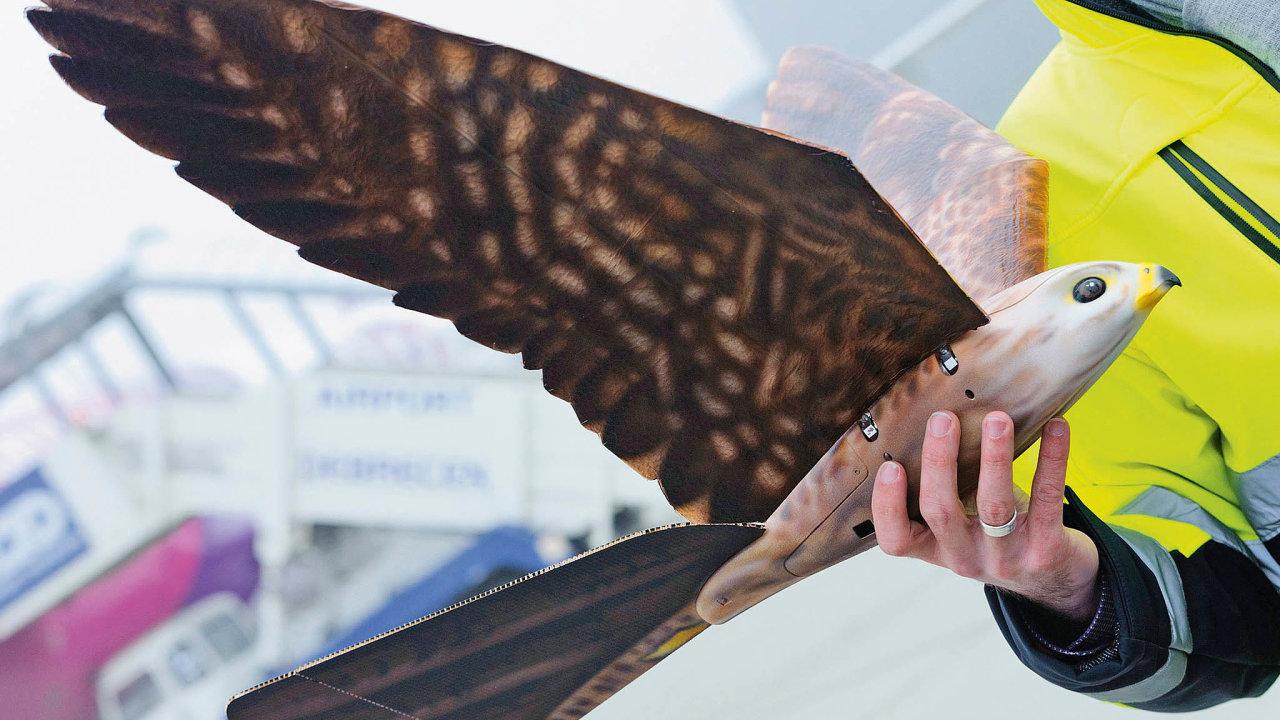 """Společnost Clear Flight Solutionsvyvinula létající stroj podobný sokolovi. Jedná se o """"letadlo"""" poháněné mávavými křídly."""