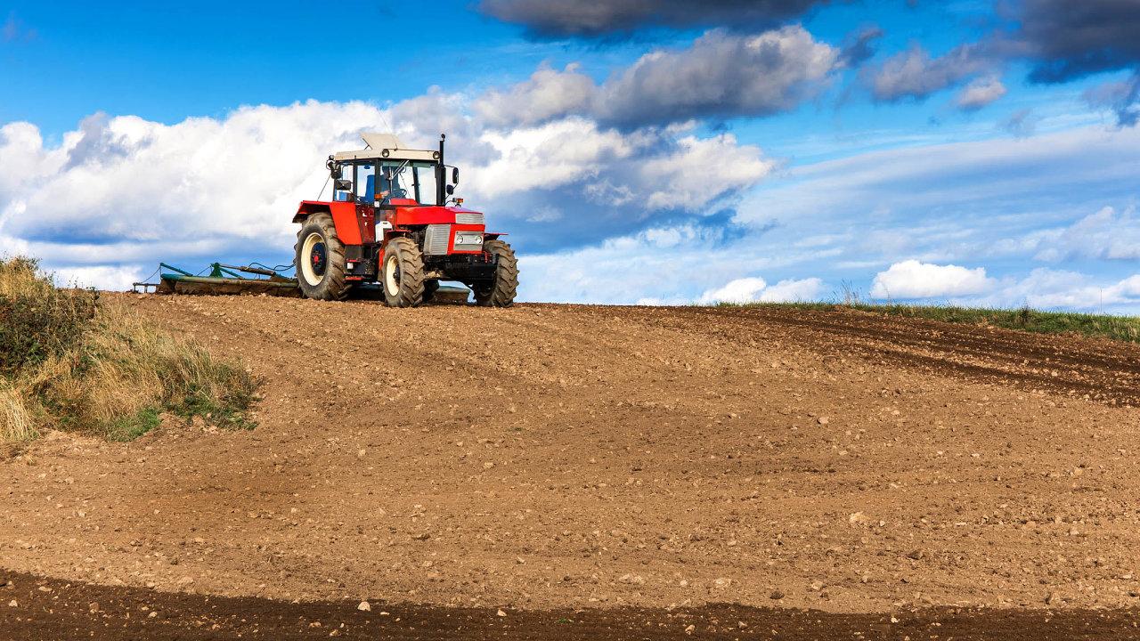 Ministerstvo zemědělství ČR omezilo maximální rozlohu jednodruhových polí na 30 hektarů. To je však podle ekologů stále příliš velká rozloha.