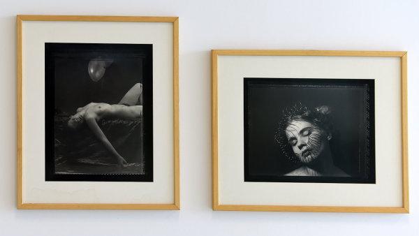 Snímek z výstavy Pavla Baňky