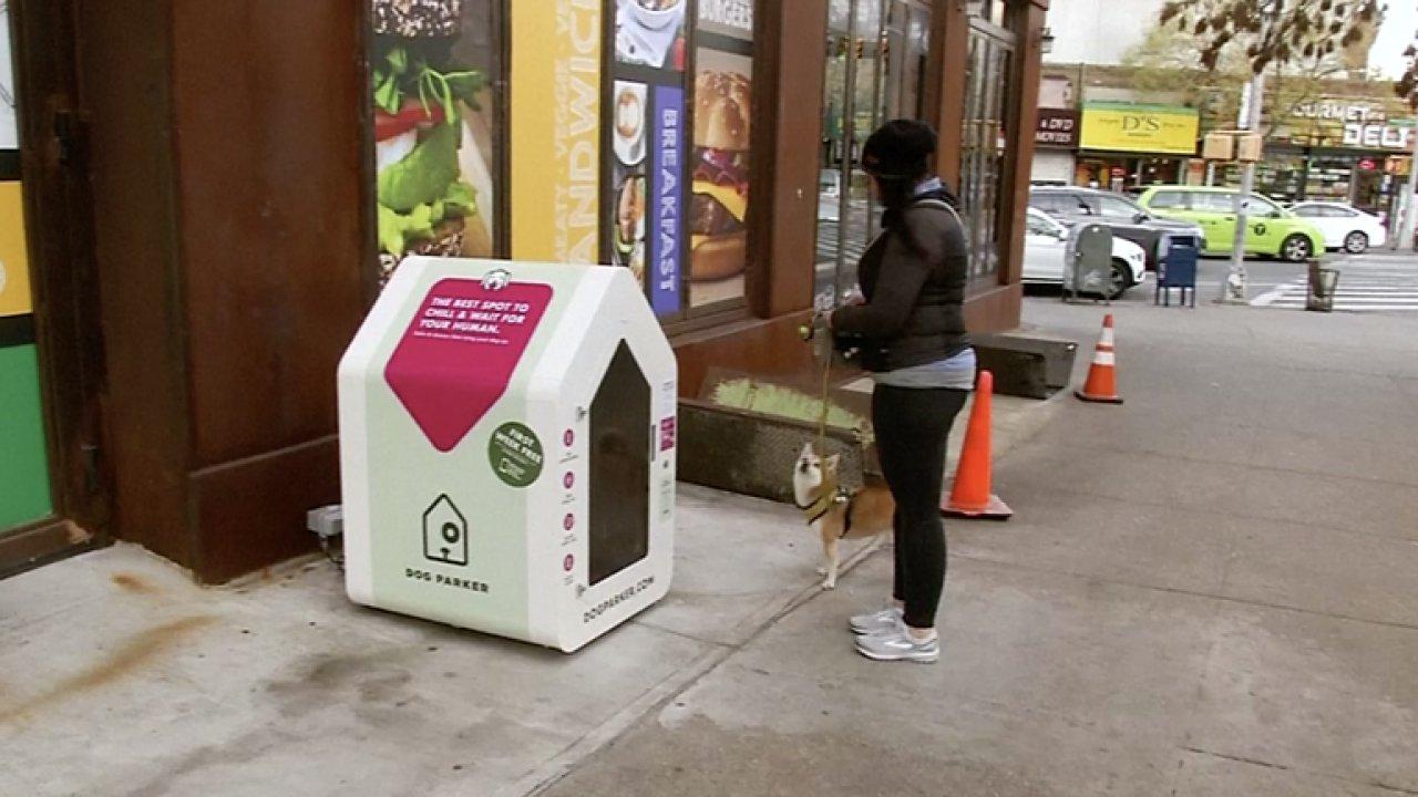 Newyorčané už nemusí uvazovat mazlíčky venku před obchodem. Mají k dispozici inteligentní boudy.