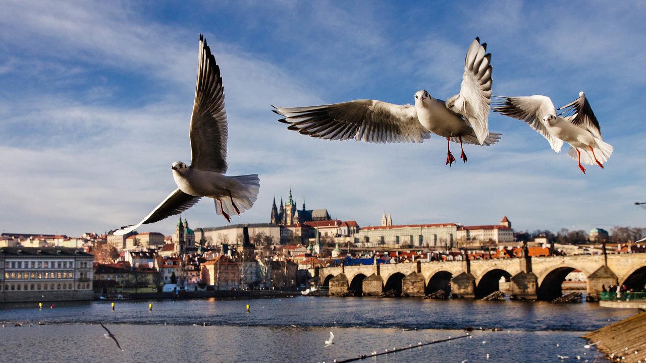 Proniknout dnes na Pražský hrad je skoro stejně náročné jako vydat se před třiceti lety za železnou oponu.